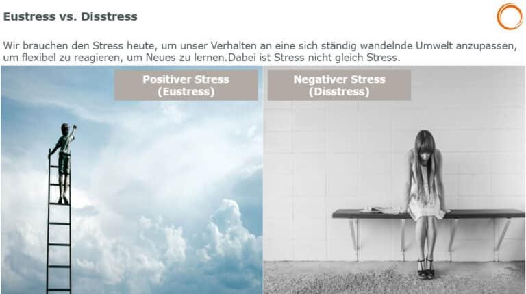 Positiver Stress (Eustress) vs. Negativer Stress (Disstress)